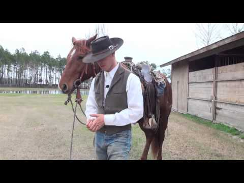 How To Use Spurs Properly