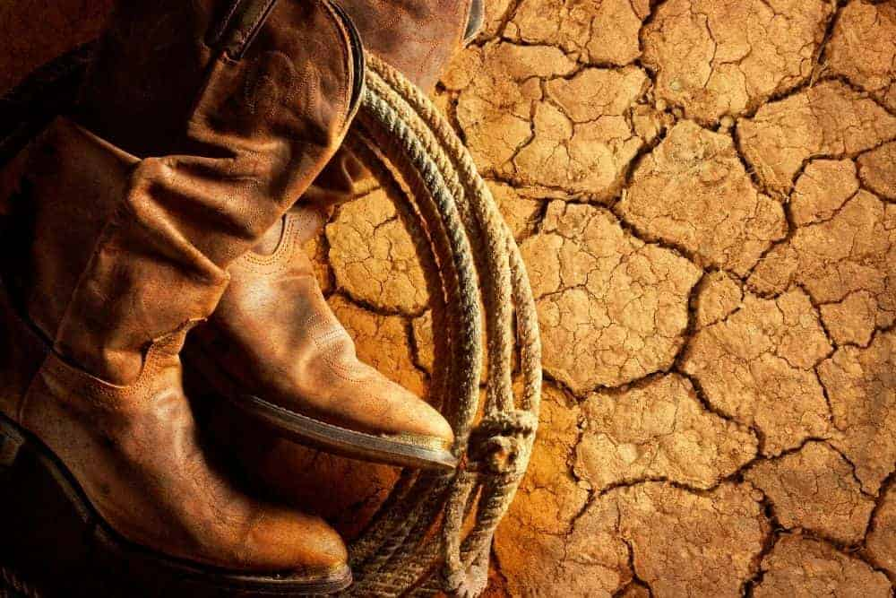How To Remove Mold From Cowboy Boots