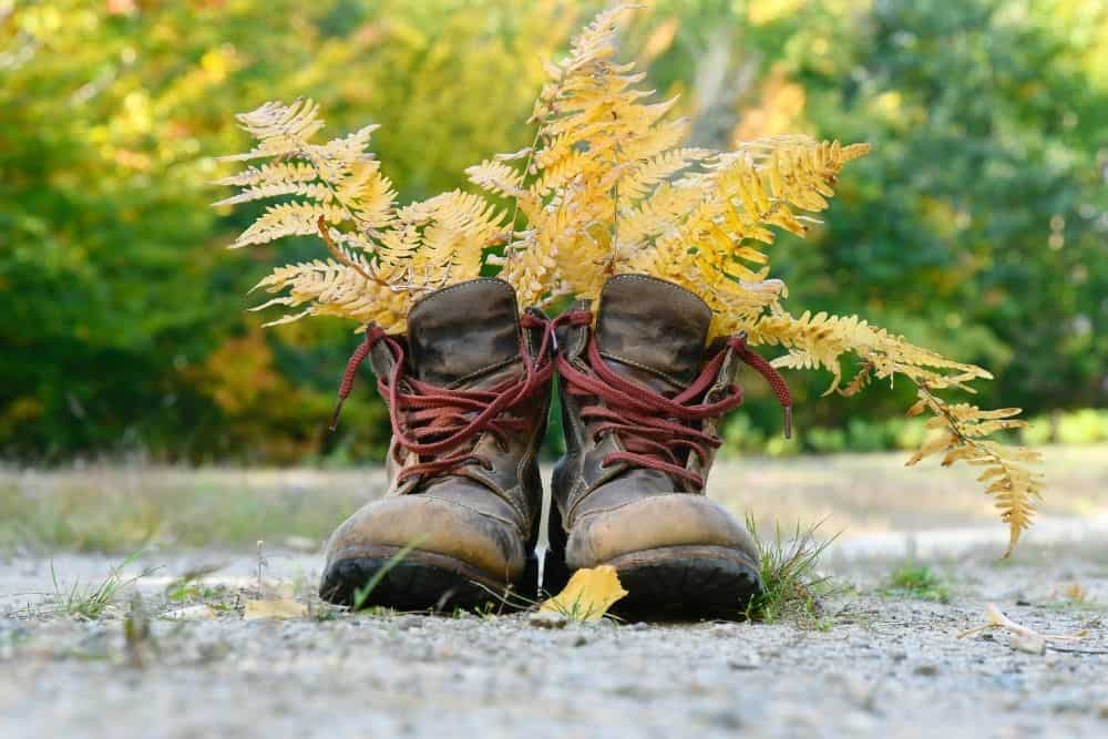 hiking boots with flowers inside